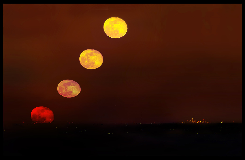 Moon Charlotte
